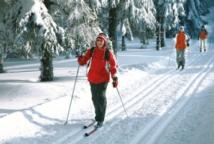 23 февраля -все на лыжню!